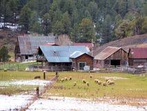 Historischer alter Bauernhof in ruhigem gebräuchlichem lizenzfreies stockbild