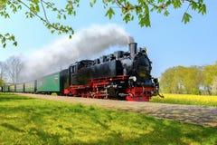 Historischer deutscher Dampfzug überschreitet durch die Felder im sprin stockbild