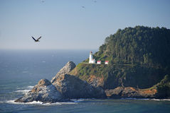 Historischer Heceta Hauptleuchtturm Oregon Lizenzfreie Stockfotos