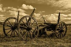 Historischer Pferdewarenkorb Lizenzfreie Stockfotografie