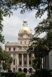 Historisches Gebäude, Savanne Lizenzfreies Stockfoto