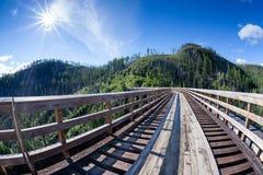 Historisk bock på Myra Canyon Provincial Park, Kanada Arkivfoto