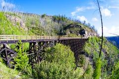 Historisk bockbro på Myra Canyon i Kelowna, Kanada Royaltyfria Foton