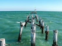 Historisk brygga på port Germein södra Australien royaltyfri foto