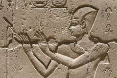 historisk Egypten hieroglyfer royaltyfri foto