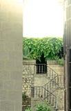 Historisk gammal stadplats i Kotor Montenegro Arkivbilder