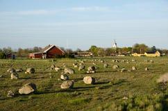 Historisk gravefield Royaltyfria Foton