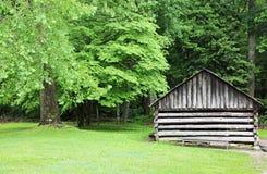 Historisk kabin Arkivfoton