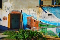 Historisk karibisk väggmålning, St Croix, USVI royaltyfria foton