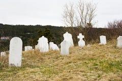 Historisk kyrkogård Royaltyfria Bilder