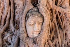 historisk park för ayutthaya royaltyfria foton