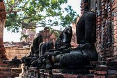 historisk park för ayutthaya royaltyfri fotografi