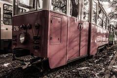 historisk spårvagn Arkivbild