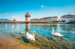 Historisk stad av Lucerne med den ber?mda kapellbron, Schweiz arkivfoton