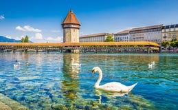 Historisk stad av Lucerne med den berömda kapellbron, kanton av Lu Royaltyfri Foto