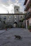 Historisk stadsmitt av den medeltida staden av Abbadia San Salvatore Arkivbilder