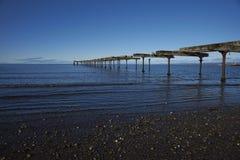 Historisk strand av Punta Arenas, Chile Arkivbild