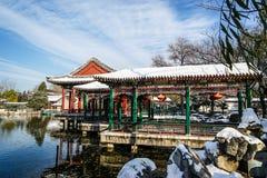 Historisk trädgård av Peking, Kina i vinter Arkivbilder