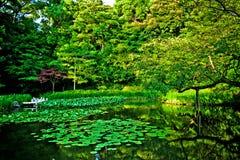 Japansk storartad trädgård för Zen på den Heian slotten Kyoto Arkivbilder