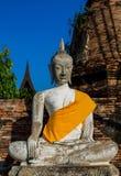 Historiska Ayutthaya parkerar den forntida Buddhastatyn arkivbilder