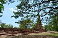 Historiska Ayutthaya parkerar Thailand Arkivbilder