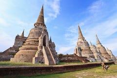 Historiska Ayutthaya parkerar Thailand Arkivfoto