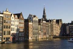Historiska byggnader och kyrkligt torn i Amsterdam Royaltyfria Foton