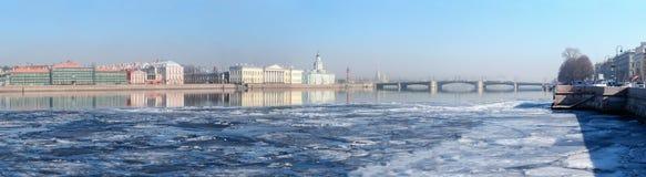 Historiska byggnader på universitetinvallningen i St Petersburg royaltyfri foto
