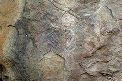 historiska carvings Arkivfoton
