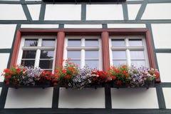 Historiska hus med blommaaskar Arkivfoto
