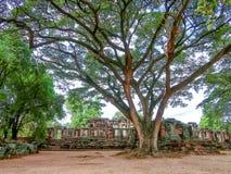 Historiska Phimai parkerar, den forntida slotten i Nakhon Ratchasima, Thailand arkivfoto