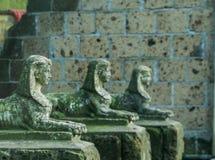 Historiska seende sfinxstatyer i en linje, en egyptisk konst och en kultur royaltyfri bild