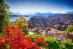 Historiskt centrum av Lucerne och schweiziska fjällängar royaltyfri foto