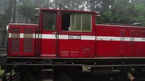 Historiskt drev på järnväg i Alishan nationellt sceniskt område i dimmigt väder stock video