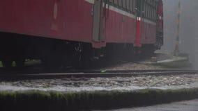 Historiskt drev på järnväg i Alishan nationellt sceniskt område i dimmigt väder arkivfilmer