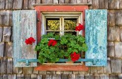 Historiskt lantbrukarhemfönster med röda pelargon royaltyfri foto