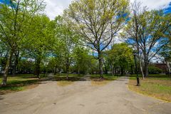 Historiskt område av domstolgatan i den Wooster fyrkanten i New Haven royaltyfria foton