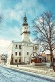 Historiskt stadshus i den huvudsakliga fyrkanten, Kezmarok, Slovakien, gammal filte Fotografering för Bildbyråer