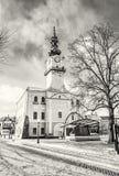 Historiskt stadshus i den huvudsakliga fyrkanten, Kezmarok, Slovakien som är akromatisk Royaltyfri Fotografi
