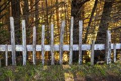 Historiskt staket på fortet Ross State Historic Park arkivfoto