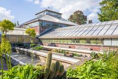 Historiskt växthus i den Hortus botanicusen royaltyfri fotografi
