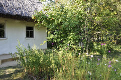 History. Ancient slavic ukrainian houses in little summer village. Royalty Free Stock Photo