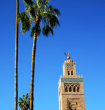 History in maroc africa  minaret religion and the blue     sky Royalty Free Stock Images