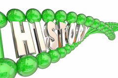 History Medical Ancestry Family DNA Traits Royalty Free Stock Photo