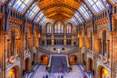 History Museum in London Stock Image