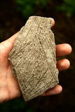 History in your hands. Prehistoric sherd of pottery in the hand stock image