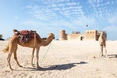 Historyczny Al Zubara fort w Katar Zdjęcie Stock