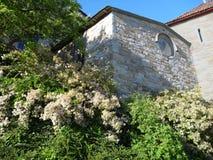 Historyczny budynek w ogródzie Fotografia Stock