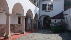 Historyczny dom z kamienistymi kolumnami i bluszczami na ściana z cegieł zbiory wideo