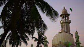 Historyczny Indiański budynek góruje nad drzewkiem palmowym zbiory wideo